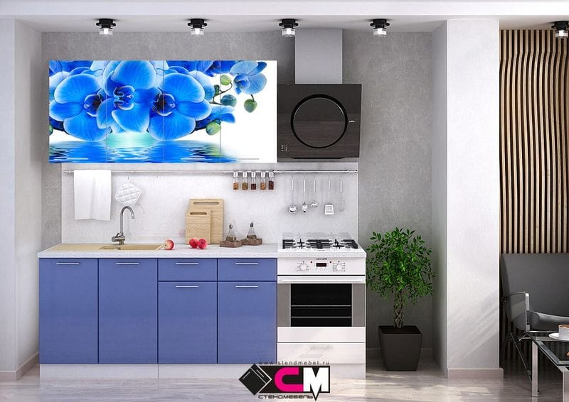 Кухня с фотопечатью «Голубая орхидея» 1.6