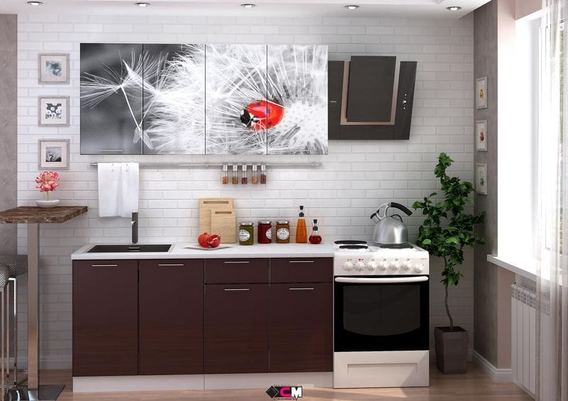 Кухня с фотопечатью «Одуванчик» 1.6