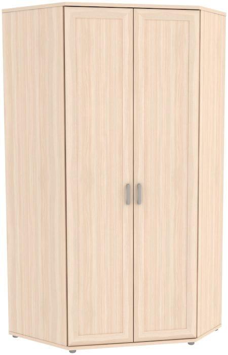 Несимметричный угловой шкаф 535.01