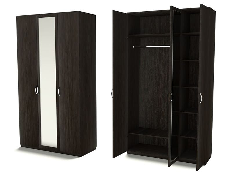 Двухсекционный шкаф для одежды с одним зеркалом, Ш-3С (З-1)