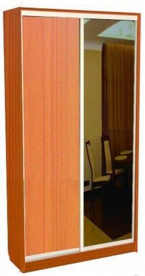Шкаф-купе 2-х дверный с зеркалом 42.12.01
